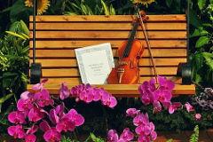 Koncert: Muzika u cveću