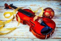 Novogodišnji koncert gudača