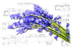 Prolećni koncert