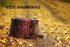 Veče harmonike
